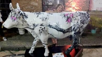Photo of Chapada: Artista residente em Lençóis leva sua obra 'Vaca da Mata' para Cow Parade em Salvador