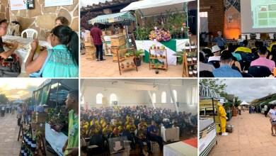Photo of Congresso na Chapada Diamantina reúne apicultores e meliponicultores de todo o estado