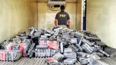 Photo of #Vídeo: Maior apreensão de cocaína da história da PRF foi registrada esta semana em Feira de Santana