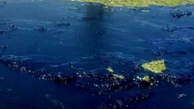 Photo of #Polêmica: Marinha diz que vazamento de óleo pode ter partido de navio irregular