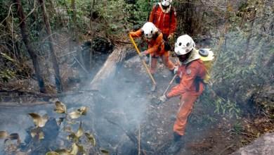 Photo of Chapada: Incêndio que destrói vegetação em Rio de Contas segue sendo combatido; novo foco em Bonito é identificado
