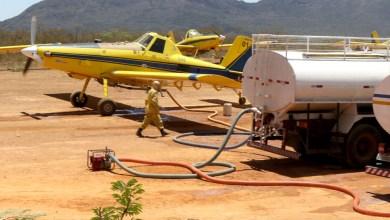 Photo of Chapada: Incêndios florestais em Mulungu do Morro e Bonito são controlados; aeronaves são utilizadas nos combates