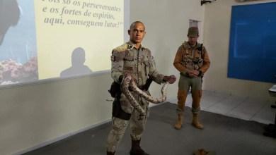 Photo of #Bahia: Rotina de operações policiais em ambientes rurais é abordada em formação