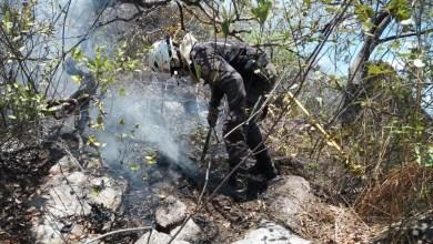 Photo of Chapada: Em atuação na madrugada, brigadistas contêm focos de incêndio em Rio de Contas