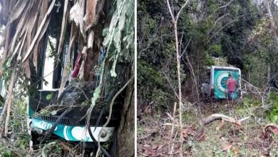 Photo of #Bahia: Ônibus bate em árvore e deixa 15 feridos na BR-420, trecho do município de Laje