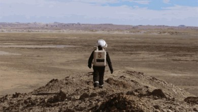 Photo of #Mundo: Instituto apoia pesquisa na simulação de produção de alimentos em Marte