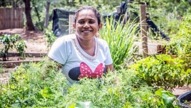 Photo of #Bahia: Agricultura familiar possui diversidade de alimentos que aumentam imunidade durante pandemia de Covid-19