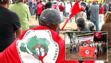 Photo of Chapada: Fazenda envolvida em plantio de maconha em 2011 é reocupada pelo MST no município de Cafarnaum