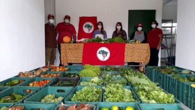 Photo of #Bahia: MST distribui mais de 200 toneladas de alimentos livres de agrotóxicos por todo o estado