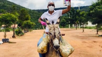Photo of #Chapada: Enfermeira de Boa Vista do Tupim usa jegue e moto para enfrentar adversidades e levar saúde à zona rural