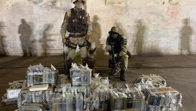 Photo of #Bahia: SSP informa que apreensões de cocaína cresceram 913% no primeiro semestre deste ano; mais de três toneladas da droga