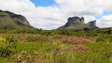 Photo of #Chapada: Petição virtual tenta impedir redução do Parque Municipal do Vale do Boqueirão na zona rural de Palmeiras