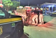 Photo of #Chapada: PRF flagra motorista inabilitado com carga de carvão vegetal sem licença ambiental na região de Ruy Barbosa