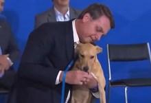 Photo of #Vídeos: Bolsonaro 'late' em discurso para celebrar sanção de lei que aumenta pena para maus-tratos a cães e gatos