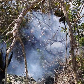 As chamas foram contidas e o incêndio foi declarado extinto | FOTO: Divulgação/CBMBA |