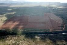 Photo of #Chapada: Quase mil hectares já foram desmatados com licença irregular no município de Piatã