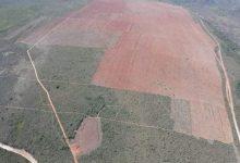 Photo of #Chapada: Agronegócio nos Gerais de Piatã enfraquecido com ação ajuizada pelo MP contra desmatamento ilegal em fazenda