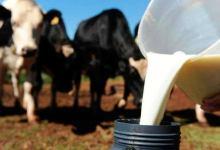 Photo of #Chapada: Com novos equipamentos, associação de Capim Grosso aumenta em 50% a produção de leite nos últimos seis meses