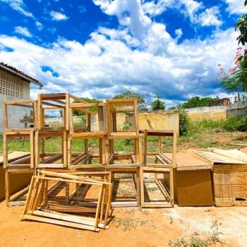 apicultores de boa vista do tupim - foto divulgação 2