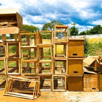 apicultores de boa vista do tupim - foto divulgação 3