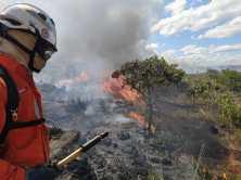Na manhã desta quinta-feira, os combatentes conseguiram conter o avanço do fogo | FOTO: Divulgação |