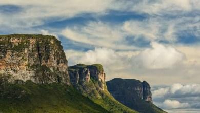 Photo of #Brasil: Com grande potencial, parques brasileiros podem gerar aproximadamente um milhão de empregos no país