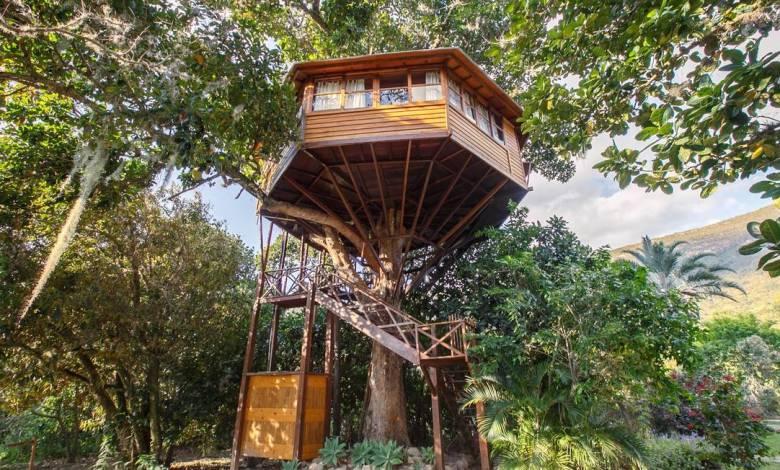 Photo of #Chapada: Casa na árvore no Vale do Capão permite isolamento social e contato direto com a natureza