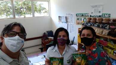 Photo of #Chapada: Cooperativa de Irecê se destaca na luta contra consumo de milhos transgênicos e produtividade