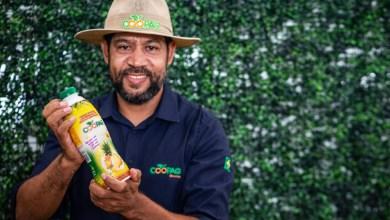 Photo of #Chapada: Agricultura familiar de Várzea Nova conquista espaço em mercado competitivo de iogurtes