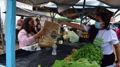 Photo of #Chapada: Secretaria de Agricultura de Lençóis reforça segurança contra a covid-19 com entrega de kit de proteção aos feirantes