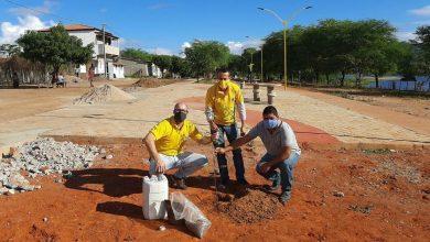 Photo of #Chapada: Contribuindo com o meio ambiente, Lions Clube de Itaberaba realiza plantação de árvores no município