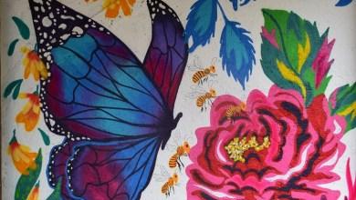 Photo of #Chapada: Lençóis recebe obra assinada pela artista Mil Monteiro; mural está chamando a atenção de moradores e visitantes