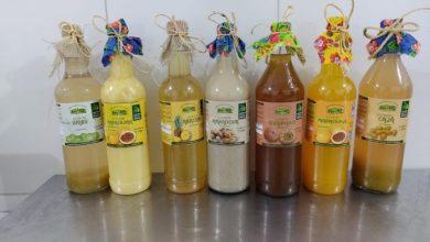 Photo of #Bahia: Licores trazem sabor da agricultura familiar às festas juninas em diferentes regiões do estado
