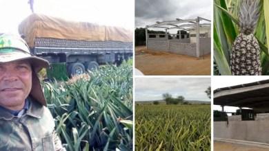Photo of #Chapada: Obra de ampliação em cooperativa deve ajudar a evoluir produção de abacaxi em Itaberaba