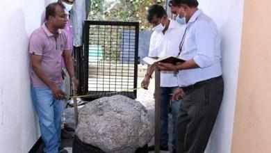 Photo of #Mundo: Pedra preciosa de mais de 500 quilos é encontrada no quintal de casa e avaliada em mais de R$500 milhões