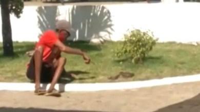 Photo of #Vídeo: Homem é picado por cobra ao tentar beijar animal na boca no município de Cruz das Almas