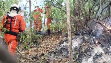 Photo of #Chapada: Bombeiros militares e brigadistas controlam incêndio no município de Lençóis