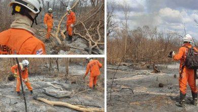 Photo of #Bahia: Combate aos incêndios em todo o estado continua com operação do governo estadual