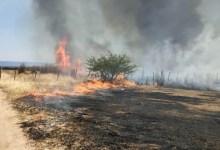 Photo of #Bahia: Vegetação é atingida por incêndio de grandes proporções em Ibotirama, no oeste baiano