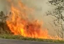 Photo of #Chapada: Foco de incêndio é registrado em área verde da região do Rio Mucugezinho
