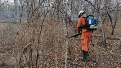 Photo of #Chapada: Área de proteção ambiental é atingida por incêndio em Miguel Calmon; combate e monitoramento continuam