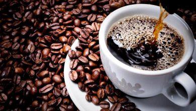 Photo of #Chapada: Cup of Excellence seleciona amostras de café da região para fase internacional da competição