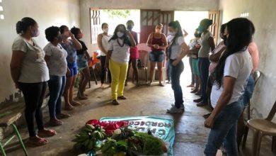 Photo of #Bahia: Mais de cinco mil mulheres rurais começam a utilizar as cadernetas agroecológicas