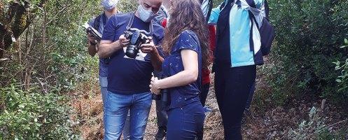 Observação de fauna e flora na Mata do Cerejal