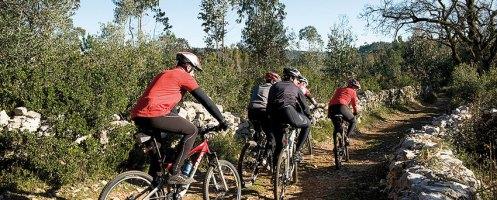 7 km de São Mamede a Fátima em bicicleta