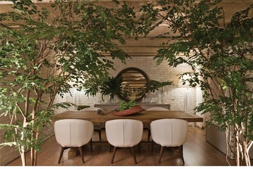 planta dentro de casa, sala de jantar, bananeira, cadeira poltrona mesa de jantar branca estofada, espelho redondo, parede tijolinho branco aparente, mesa madeira de demolição