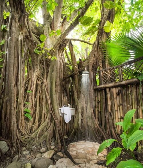ducha no meio do mato jardim hotel de luxo golden eye jamaica