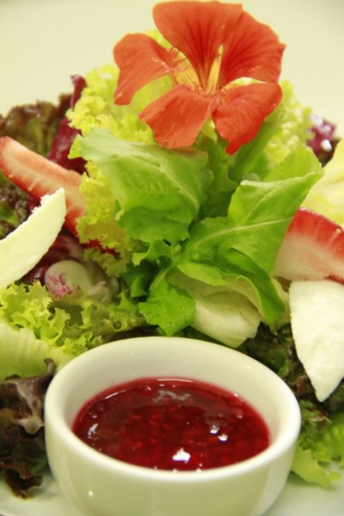 salada antioxidante kurotel com vinagrete de frutas vermelhas e mussarela de búfala receita