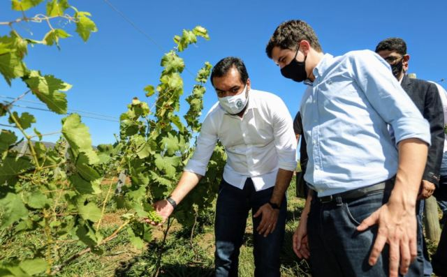 Governador visita área de futuro empreendimento vitivinícola em Areal
