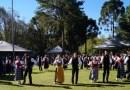 Festa da Árvore de Maio contará com apresentações culturais e gastronomia típica